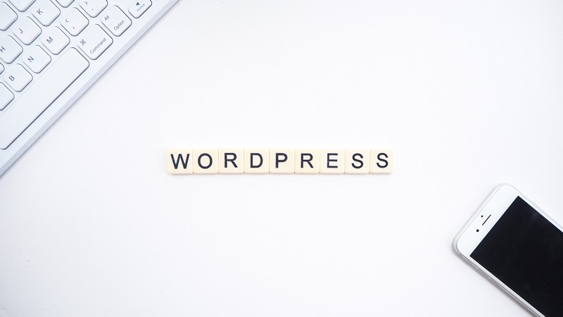 Role w WordPressie. Jak dodać, edytować i usunąć użytkownika?