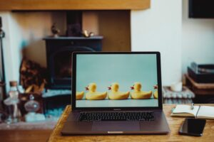 Read more about the article Jak sprawdzić motyw i page builder w WordPressie?